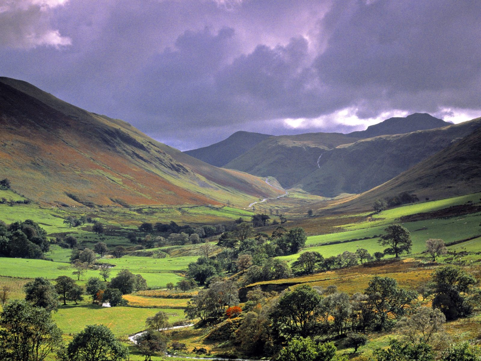 the lake district The lake district explore find out more books features argentina's lake district – the northwestern wedge of argentine patagonia – is a land of picture-perfect glacial lakes surrounded by luxuriant forests, jagged peaks and extinct volcanoes.