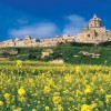 The Mdina Region