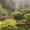 The Butchart sunken garden on Vancouver Island