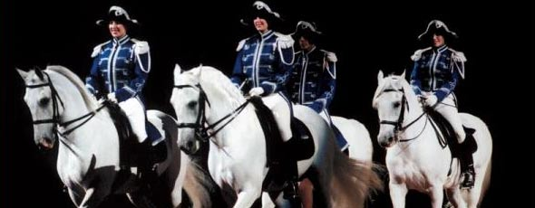 The Lipizzaners - World Famous White Horses of Vienna